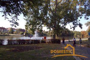 Gidea Park, The Lake